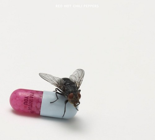 "Red Hot Chili Peppers ""I'm With You"" Cover Art By Damien Hirst"