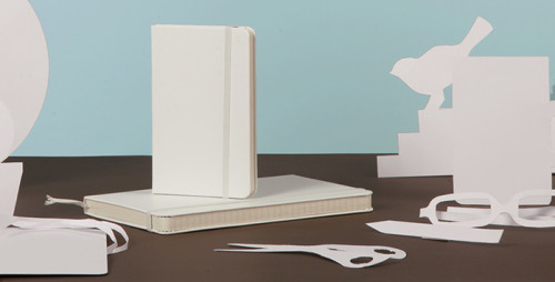 White Moleskine Notebooks