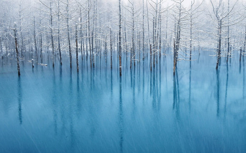Blue Pond & First Snow - Kent Shiraishi