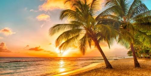 高城剛が選んだ世界の南の島々